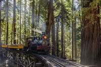 Felton, California - August 31, 2019:  Roaring Camp' Dixiana Shay Steam Train over Trestle Crossing