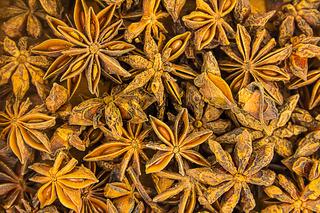 spices pattern star anise dark brown background fragrant plants base