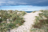 Path to beach in Denmark