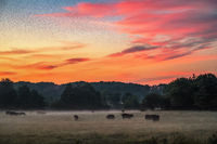 beautiful dreamy sunrise on the farm land in the country