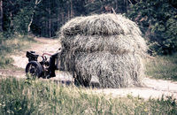 Farmer on a small tractor carrying hay.