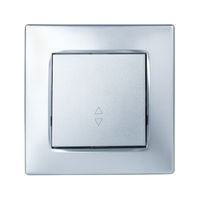 Front view of silver room light switch