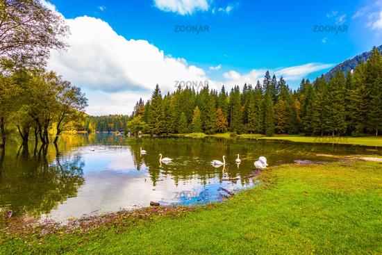 Wonderful rest on beautiful nature