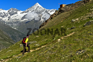 Wanderer im Anstieg zur Täschhütte, hinten das Weisshorn über dem Mattertal, Täschalp,Wallis,Schweiz