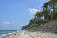 Seaside Resort Nienhagen ghost forest