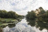 Isar backwater
