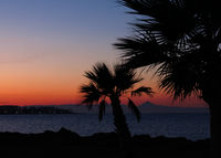 Sunset view from Denia, Spain. Romantic sky and outlines of palms.