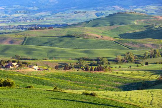 Tuscany hill landscape at sunset