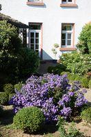 Garten an einem Haus