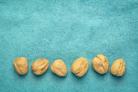 walnuts on textured handmade paper