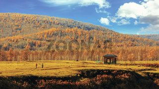 Autumn Mountain Forest Trees Landscape Nature Yellow Orange Red Green Far Away