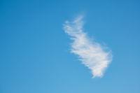 Eine weiße Cirruswolke am blauen Himmel