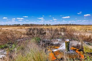 Heisse Quelle im South Luangwa Nationalpark, Nsefu-Sektor, Sambia | Hot Springs at South Luangwa National Park, Zambia