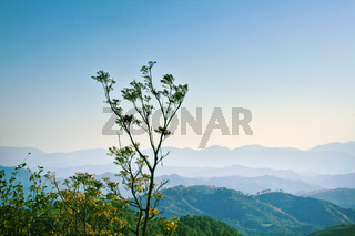 Mountain landscapes of spring time