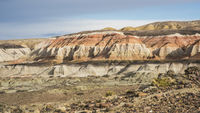 Colorful valley of the Petrified Forest Natural Reserve, Sarmiento, Patagonia, Chubut, Argentina