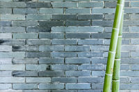 gray brick wall and bamboo