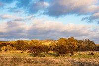 Landschaft auf der Insel Moen in Dänemark