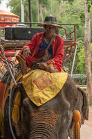 Mahout sitting on elephant with red howdah