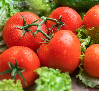 Tomatoes and green fresh salad on wooden table