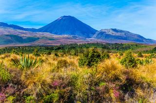 Volcanic massif of Tongariro Park