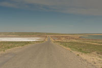 The road through the steppes to the Aral sea.Kazakhstan,2019