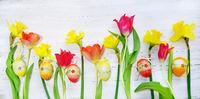 Ostern, Frühling, Narzissen, Osterglocken, Ostereier, auf Holz, Banner, Header, Headline, Panorama,