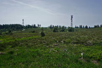 Black forest, Hornisgrinde, hill moor and towers