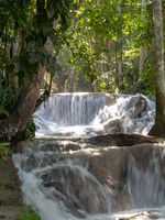 Dunns river falls flowing in rain forest