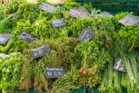 Different kinds of fresh herbs for sale at a market