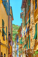 Street with colorful houses in Porto Venere