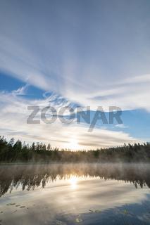 Forest pond landscape at summer sunrise