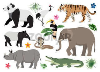 Set of cute wild animals and birds icon, decor for children