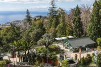 tropical garden, Monte, Funchal, Madeira, Portugal, Europe