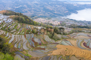 terraced field landscape and village in morning