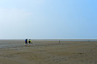 Visitors walking across the mudflats, Schleswig-Holstein Wadden Sea National Park,Germany