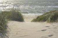 baltic beach entrance Fischland