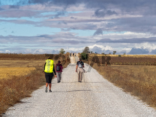 Via Aquitana - Calzada Romana