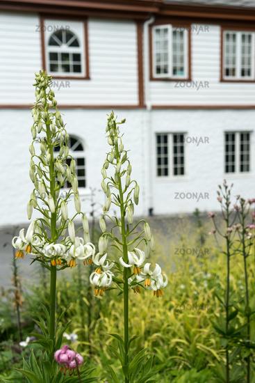 Park of Ringve Music Museum in Trondheim