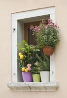 Mediterranean Window Flowers