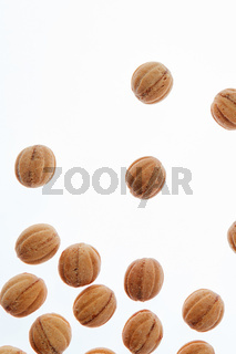 Falling homemade cookies walnuts on a white background.