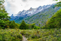Beautiful nature landscape at Torres del Paine National Park in Southern Chilean Patagonia