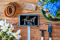 Spring Flowers, Sign, Calligraphy Thank You, Wooden Background
