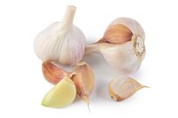 Fresh garlic closeup isolated on white background
