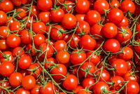 Red tomatoes background. Group of fresh cherry tomatoes.