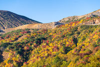 Fukushima Mountain bandai Autumn Fall