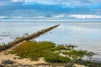 Buhne am Wattenmeer auf der Insel Amrum
