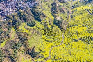 aerial view of beautiful spring on wuyuan huangling village