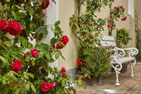 House entrance decorated with flowers. Rustic style concept. Beautiful design elements