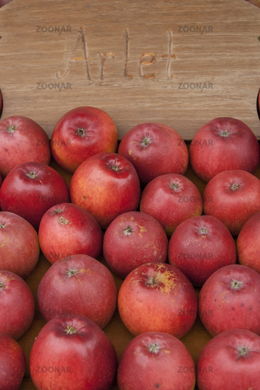 Apple (Malus), Arlet variety