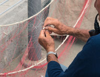 Senior fisherman reparing fishing net